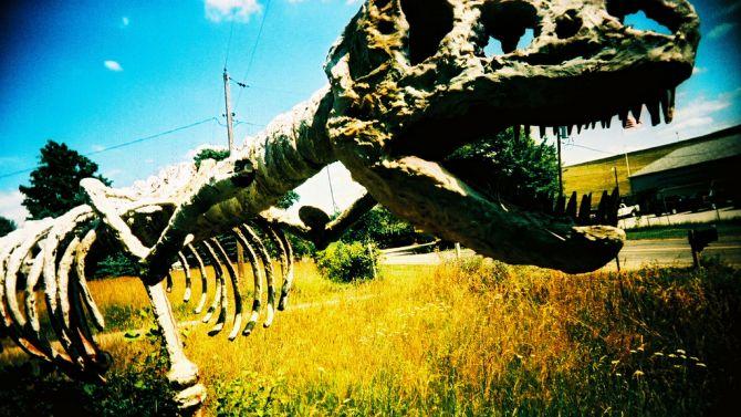 Binnenkort blijft er van Videoland ook alleen nog een skelet over