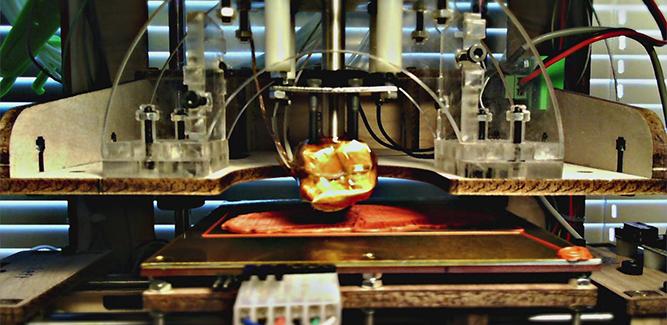 Poppetjes, protheses en potten uit 3D-printer