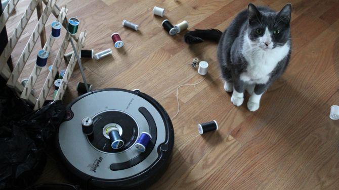 Ja, katten zijn echt dol op iRobots