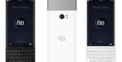 blackberry-sliders