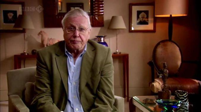 David Attenborough mag zondagochtend best wel bij ons in 't oor komen fluisteren